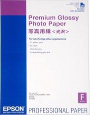 Бумага Epson Premium Glossy Photo Paper (C13S042091)