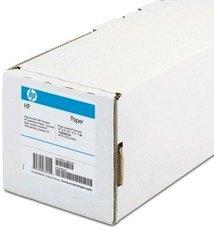 Пленка HP Clear Film (C3876A)