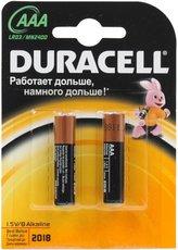 Батарейка Duracell Basic (AAA, Alkaline, 2 шт)
