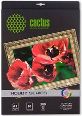 Холст Cactus CS-СA326010