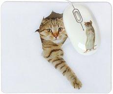 Мышь + коврик CBR Capture