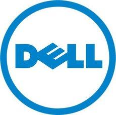 RAID-контроллер RAID Dell PERC H330 (405-AADW)